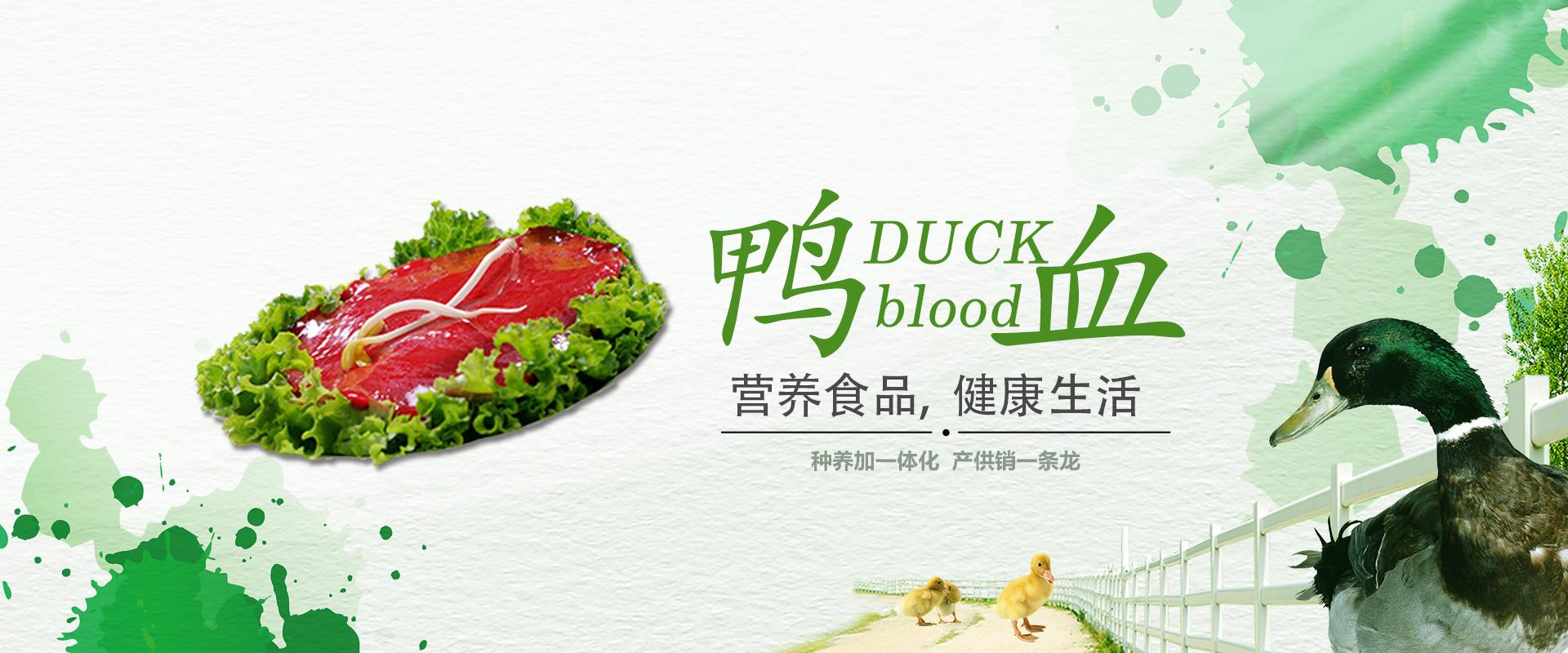 做实力派 健康鸭血生产工厂